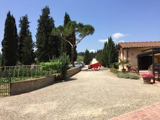 Montespertoli, Italië: photo5.jpg