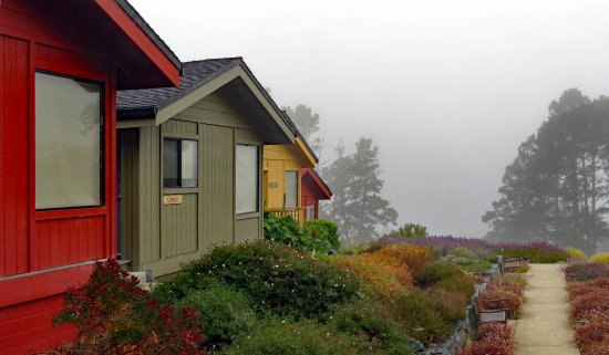 Cottages at Little River Cove: even if the fog rolls in the place is gorgeous