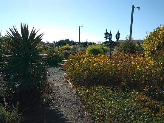 Surf Motel and Gardens: One of the nice paths through the gardens