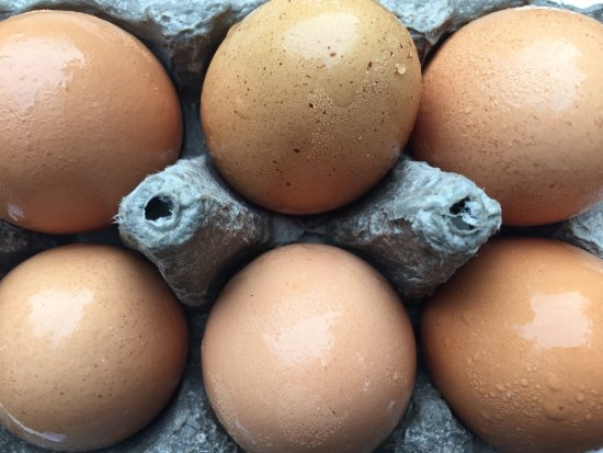 Grandview, TN: Farm fresh eggs from the Welcome Basket that you can order for your arrival from The Farm Store.