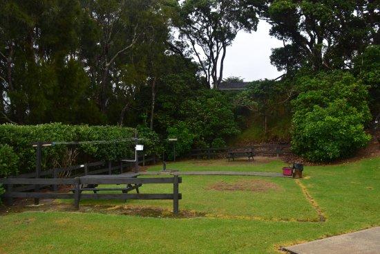 Waipu, نيوزيلندا: camping ground