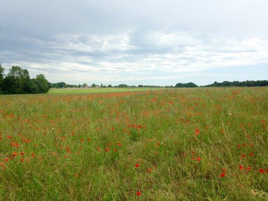 LoireLife a Gue de Ray : Gué de Ray farmland landscape
