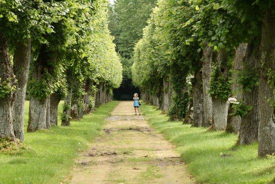 Breil, Frankrijk: Lime grove