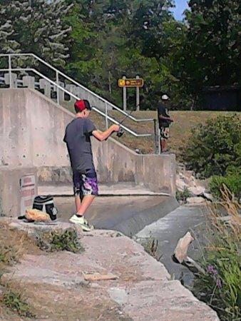 Dunnville, Canada: Good walleye fishing