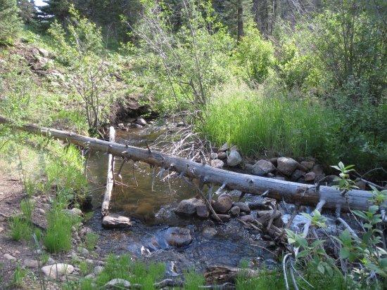 Vadito, Nuevo Mexico: Creek that flows into the  Rio Pueblo