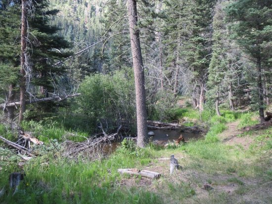 Vadito, Nuevo Mexico: Creek near Agua Piedra