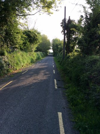 Murphy's Farmhouse: The quiet country lane to the village