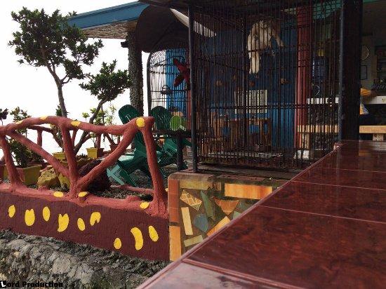 Red Parrot Inn: The restaurant