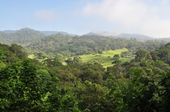 Ocosingo, México: Selva Lacandona