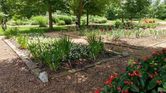 Nathanael Greene/Close Memorial Park : 20160711_140619_HDR_large.jpg