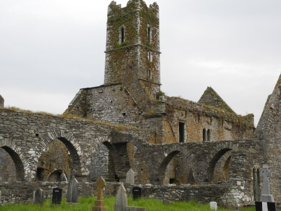 Timoleague, Irlanda: A side view of the friary