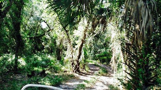 Arcadia, Флорида: photo5.jpg