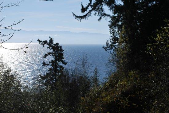 Ocean Wilderness Inn: View from the front of the Inn
