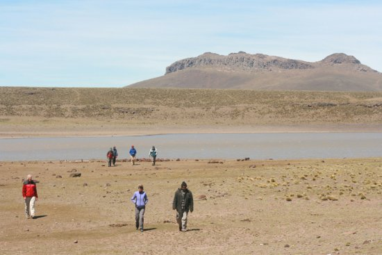 Province of Rio Negro, Argentina: Al fondo el Cerro Corona, excursion inolvidable, mucha flora y fauna a pesar de ser un desierto