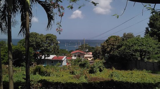 Caribbean Cottage Club: View from the verandah of the Flamboyant Cottage