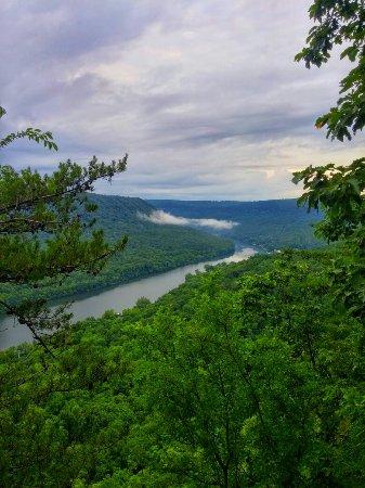 Signal Mountain, TN: 0709160853_HDR~2_large.jpg