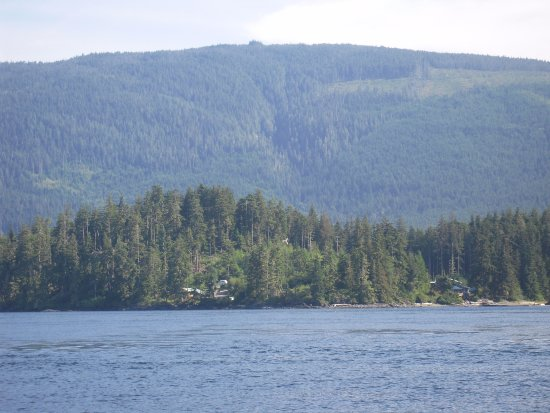 Hidden Cove Lodge: Lodge and Cottages from Johnstone Straits