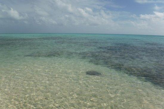 Tuherahera, Polinezja Francuska: photo0.jpg