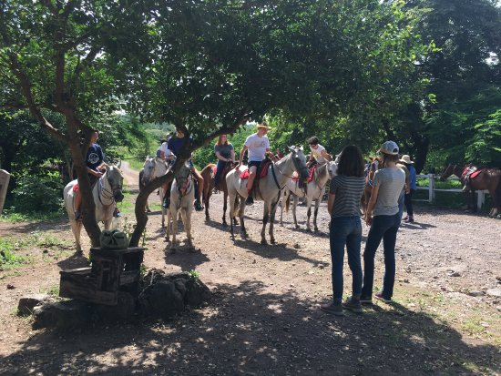 Santa Cruz, Kostaryka: Ride up zip down.