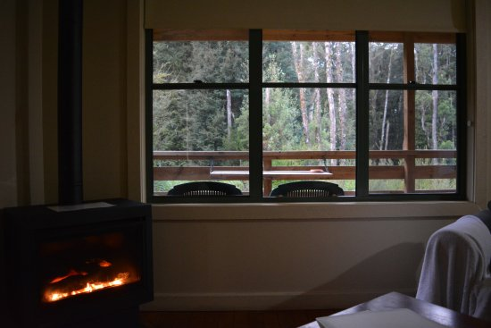 "Corinna, Austrália: Cottage 8 ""Devlyn"" - Lounge room and forest view"
