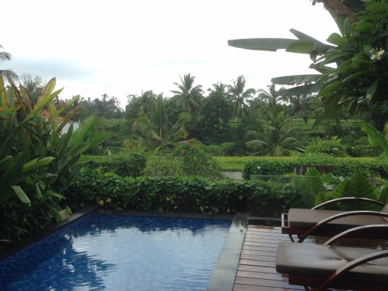 Ubud Green: Private pool