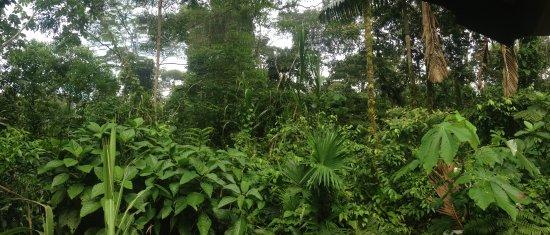 Amazanga Ecolodge & Native Spa Photo