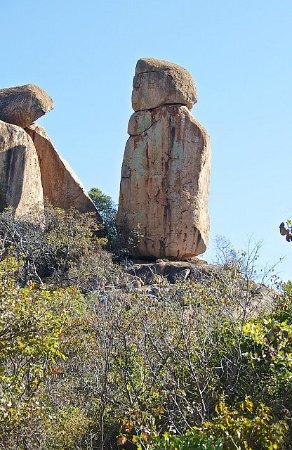 ThisAndThat Safaris