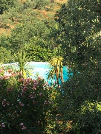 Monsummano Terme 사진