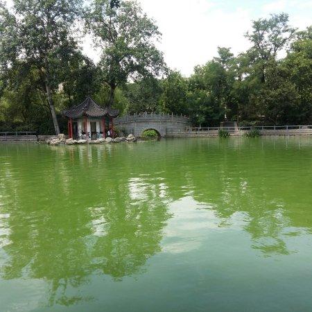 Linhu Park