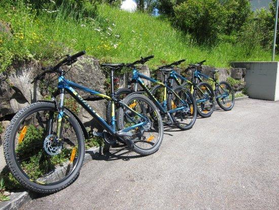 Hotel Grauholz: Gratis Mountainbikes