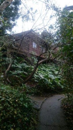 Protea Guest House: DSC_3187_large.jpg