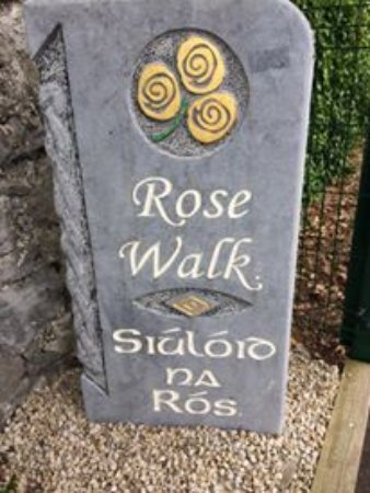 Woodlands Caravan Park: Lovely walk through this rose garden on way to the town