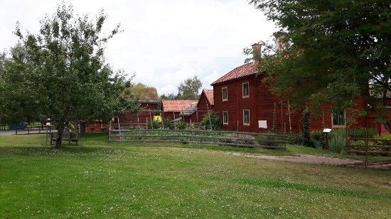 أوبسالا, السويد: 20160711_111011_large.jpg