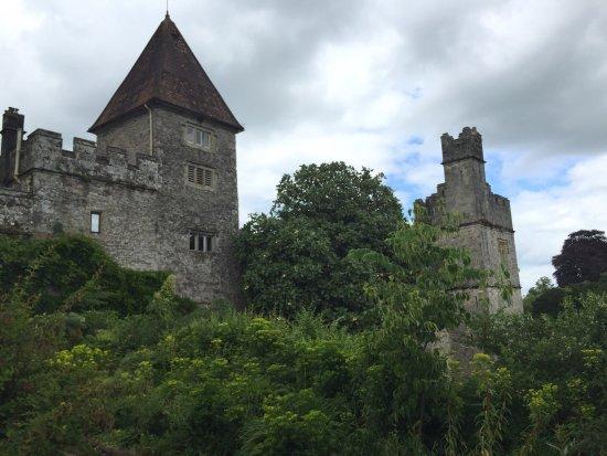 Lismore Castle Gardens & Gallery: photo2.jpg