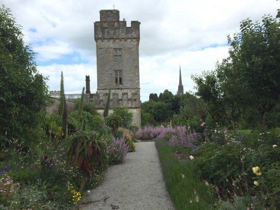 Lismore Castle Gardens & Gallery: photo4.jpg