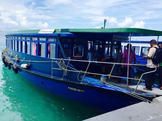 Kaafu Atoll: Ferry