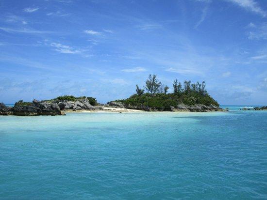 แฮมิลตัน, เบอร์มิวดา: snorkeling area was remote and beautiful