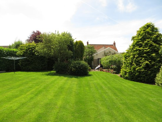 Timsbury, UK: Garden view 2
