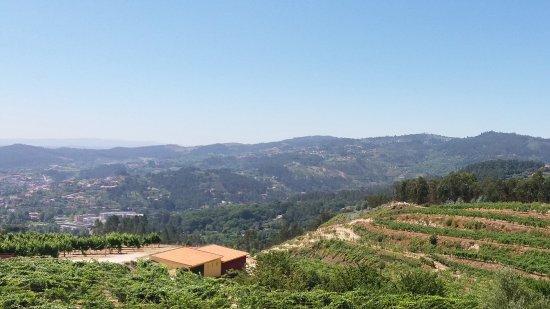 세로리코데바스토 사진