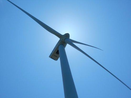 Cape Uppuruibana: 風車の直下に行けます すごい風切り音