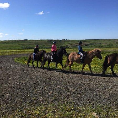 Hestheimar Tours