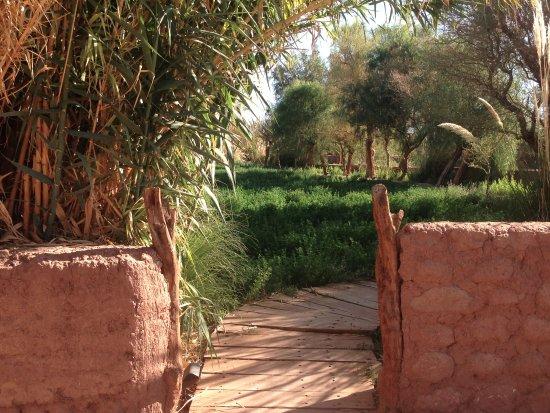 explora Atacama: jardins com os caminhos originais preservados