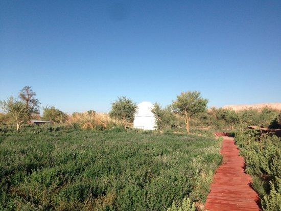 explora Atacama: Observatório explora, maior emoção!