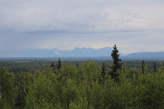 Talkeetna Alaskan Lodge: View from the back deck