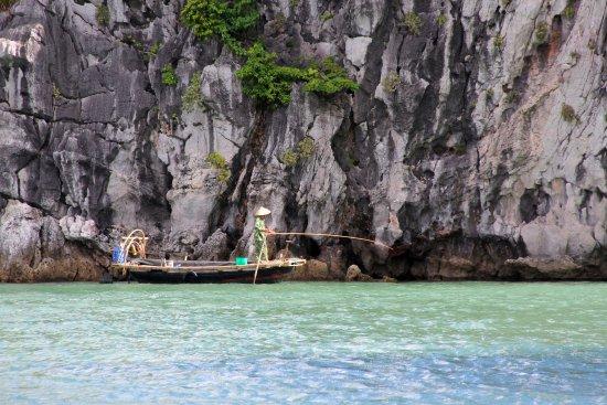 Bai Tu Long Bay照片