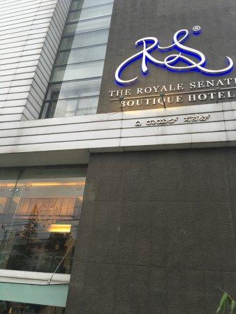 The Royale Senate: Entrance
