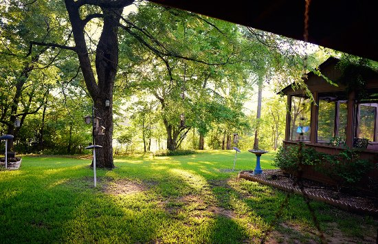 ‪‪Nacogdoches‬, تكساس: Overlooking backyard from porch swing‬