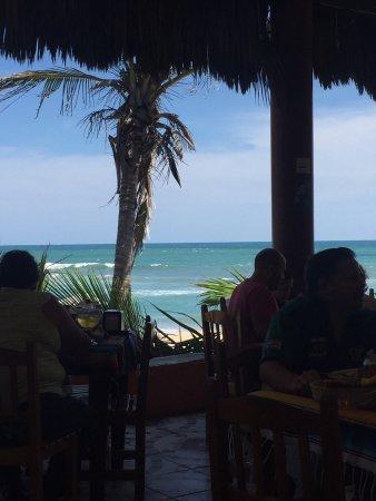 Mr. Lionso Playa Bruja: photo1.jpg