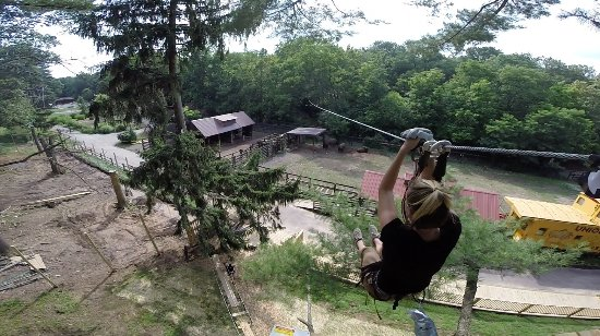 Norristown, Пенсильвания: PA's only zipline where you can zip right over a bison and elk exhibit!