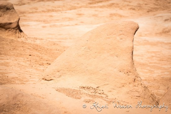 Sand Shark at Goblin Valley State Park